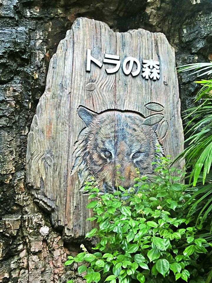 สวนสัตว์อุเอะโนะ 9