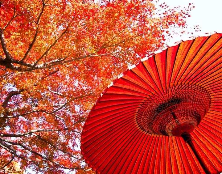 5 สิ่งที่ควรทำในฤดูใบไม้เปลี่ยนสีที่ญี่ปุ่น