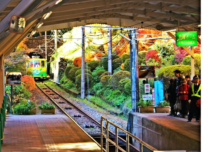 ใบไม้เปลี่ยนสีใกล้โตเกียว ภูเขาทะคาโอะ