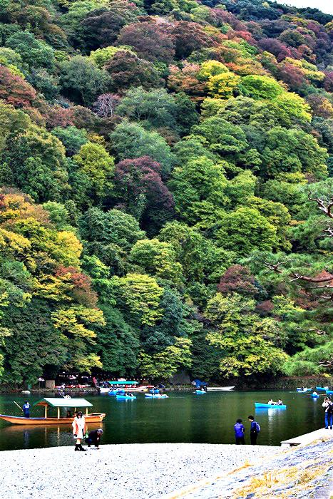 ใบไม้เปลี่ยนสีที่ อาราชิยามะ เกียวโตใบไม้เปลี่ยนสีที่ อาราชิยามะ เกียวโต