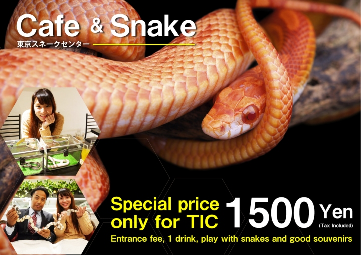 A3_snake_cafe