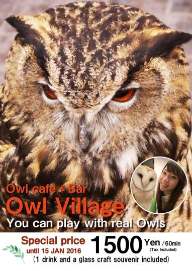 owlcafe002_campaing