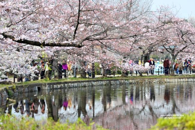 上野公園3.JPG