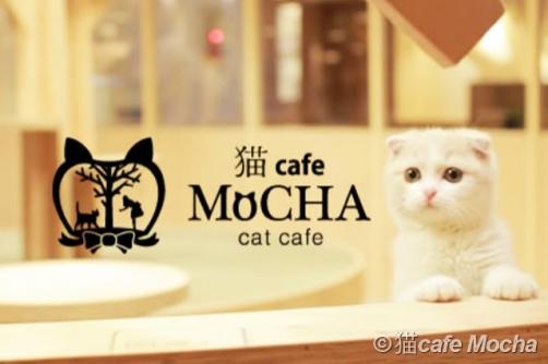 aj004_animalcafe_17